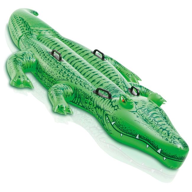 Grand crocodile à chevaucher